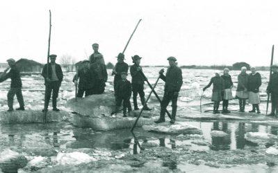 Tulvasota: Vuoden 1953 paisunnat herättävät
