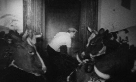 Video: Turvaa työsi arvo 1956